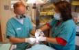 Stomatologia XXI wieku